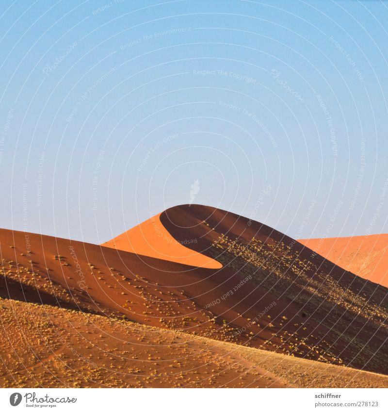 Puscheldüne II - Die perfekte Welle Natur rot Landschaft Umwelt Gras Wellen Schönes Wetter Wüste Stranddüne Düne Wolkenloser Himmel Ödland Namibia Bergkamm