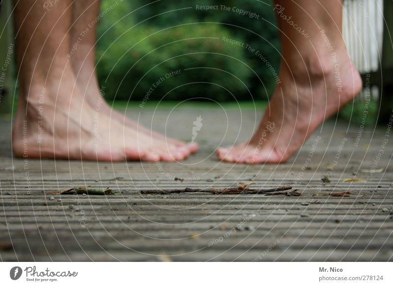 unscharf Mensch Jugendliche Sommer ruhig Erwachsene Umwelt Liebe Glück Beine Fuß Paar Freundschaft Park Zusammensein 18-30 Jahre Haut