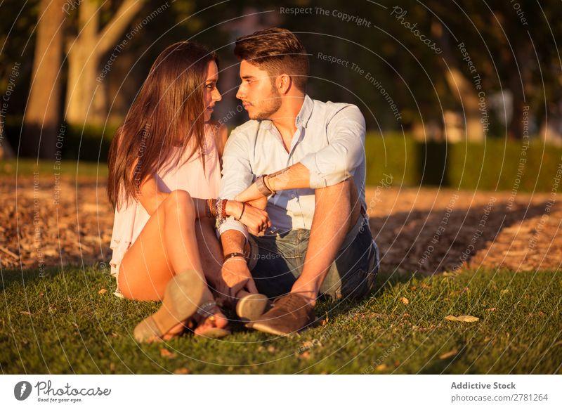 Liebenswertes Paar, das bei Sonnenuntergang von Angesicht zu Angesicht schaut. Park Porträt sitzen Blick Angebot Zuneigung horizontal Farbe Sonnenlicht Abend