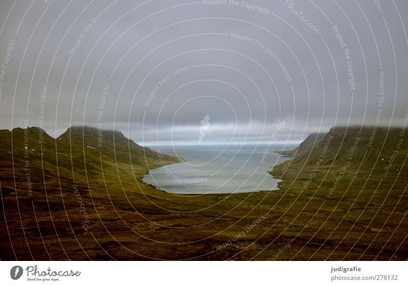 Island Umwelt Natur Landschaft Wasser Wolken Klima schlechtes Wetter Felsen Berge u. Gebirge Fjord Westfjord außergewöhnlich dunkel gigantisch kalt natürlich