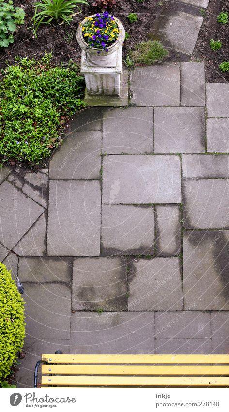 Gartenidyll Sommer Sträucher Park Menschenleer Platz Terrasse Wege & Pfade Wegkreuzung Bodenplatten Betonplatte Gartenweg Bank Holzbank Gartenbank Blumentopf