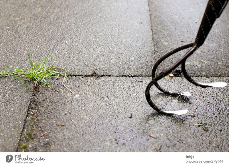mit Kanonen auf Spatzen schießen Gartenarbeit Gras Unkraut Unkrautbekämpfung Park gartenkralle Gartengeräte Beton Metall Wachstum bedrohlich Spitze Gefühle