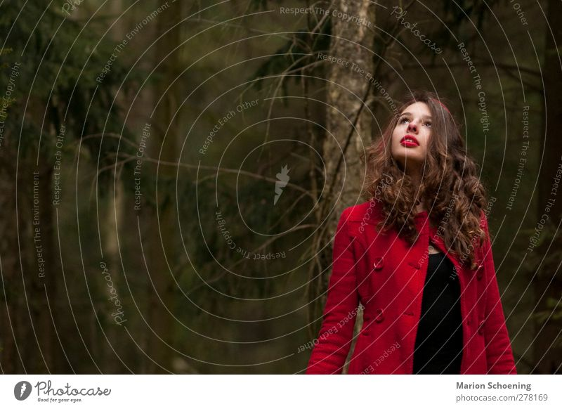 Rotkäppchen allein im Wald feminin Junge Frau Jugendliche 1 Mensch Mantel brünett Locken beobachten Blick rot Einsamkeit Schüchternheit Märchen Farbfoto