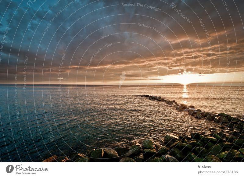 Hiddensee | ....finish unravel Natur Landschaft Himmel Wolken Sonnenaufgang Sonnenuntergang Küste Ostsee Insel entdecken Erholung bedrohlich Buhne Farbfoto