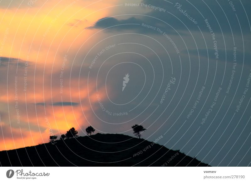 Hügel brennt Natur Landschaft Pflanze Urelemente Feuer Luft Himmel Wolken Sonnenaufgang Sonnenuntergang Klima Gewitter Baum San Giacomo Italien Europa
