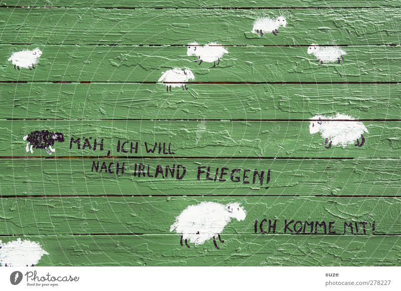 Heeme is am scheenstn Holz Graffiti Linie Streifen streichen einfach lustig grün Comic Schaf Redewendung Holzwand Wand Holzbrett angemalt Schmiererei Zeichnung