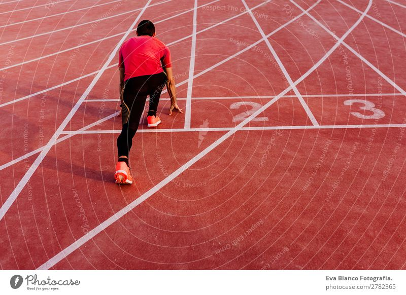 junger Muskelsportler ist auf der Rennstrecke. Lifestyle Freizeit & Hobby Sport Leichtathletik Joggen maskulin Junger Mann Jugendliche Erwachsene 1 Mensch