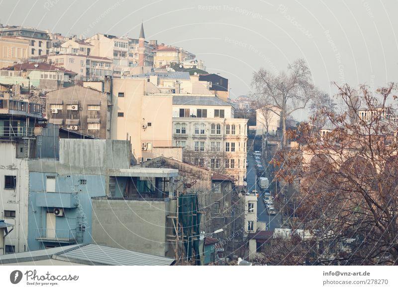 Istanbul Ferien & Urlaub & Reisen Stadt Haus Ferne gelb Wand Architektur Mauer Gebäude braun gold Ausflug Dach Bauwerk heiß Hauptstadt