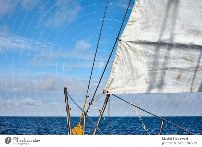 Alter Schoner segelt mit Horizont über Wasser. Lifestyle Ferien & Urlaub & Reisen Ausflug Abenteuer Ferne Freiheit Kreuzfahrt Sommer Sommerurlaub Meer Segeln
