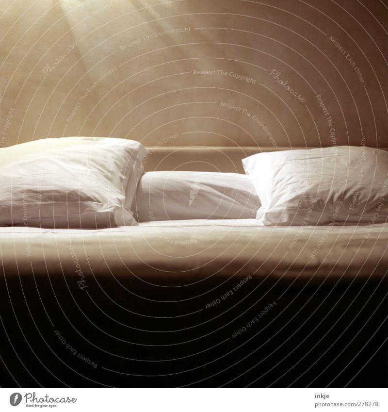 Sonntagsdetail Lifestyle harmonisch Wohlgefühl Erholung ruhig Häusliches Leben Bett Schlafzimmer Kopfkissen Bettwäsche kuschlig braun weiß Gefühle Stimmung