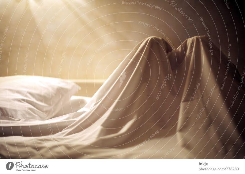 Sonntagsdetail Lifestyle Wohlgefühl Erholung ruhig Freizeit & Hobby lesen Häusliches Leben Bett Schlafzimmer Ruhestand Feierabend Mensch 1 Bettdecke Bettlaken