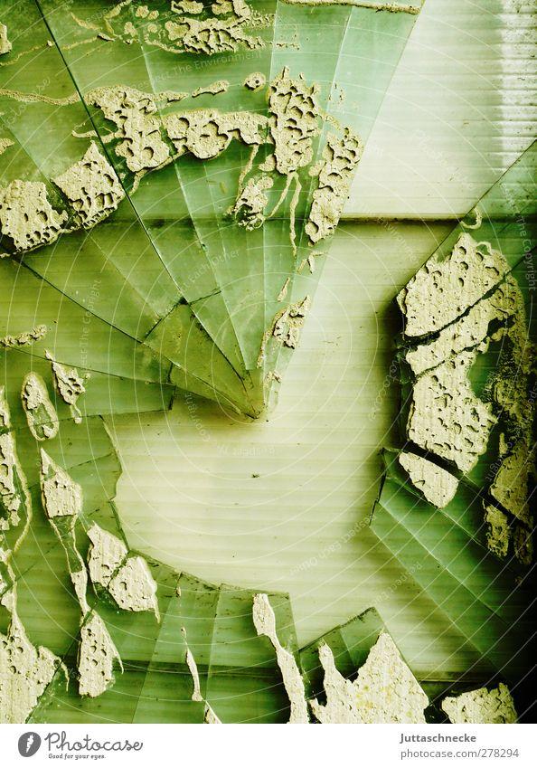 Ich seh einen Vogel.... Fenster Tür Glas eckig kaputt trist grün Aggression Desaster Krise Verfall Vergänglichkeit Scherbe Glasscherbe gebrochen Zerstörung