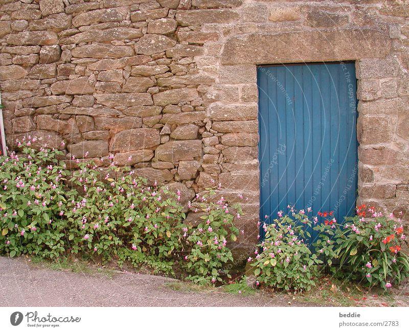 Blaue Tür Blume blau Ferien & Urlaub & Reisen Stein Mauer Bretagne