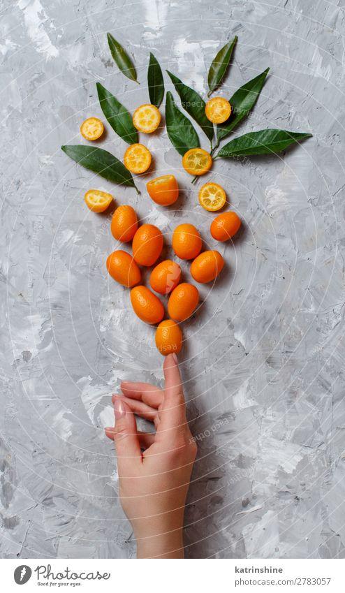 Kumquat-Früchte auf grauem Hintergrund Frucht Dessert Ernährung Vegetarische Ernährung Diät exotisch Hand Menschengruppe Blatt frisch natürlich oben saftig gelb