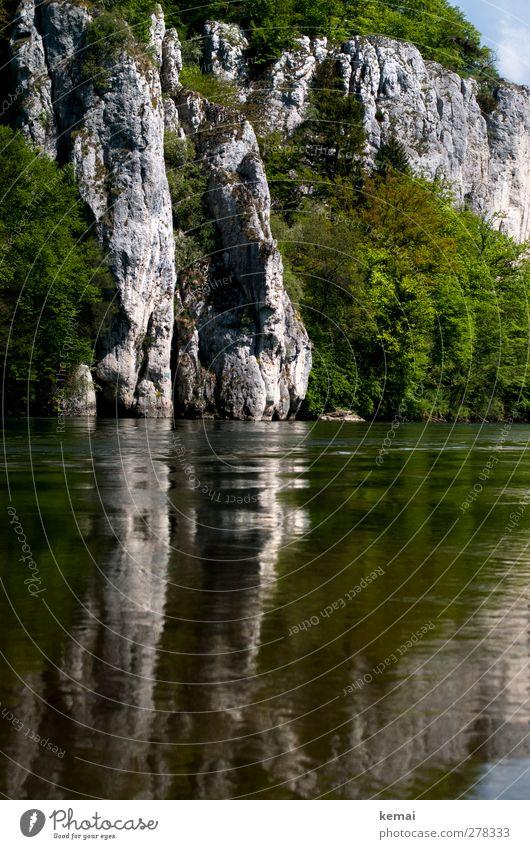 Donau-Idylle Umwelt Natur Landschaft Pflanze Urelemente Wasser Sommer Schönes Wetter Sträucher Felsen Flussufer nass bewachsen Wasseroberfläche Farbfoto