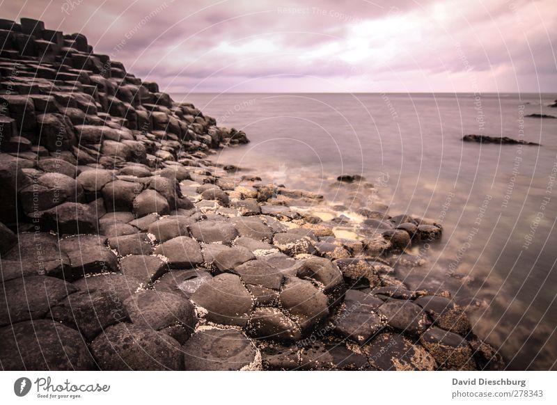 Giant's Causeway Ferien & Urlaub & Reisen Ausflug Sightseeing Meer Natur Wasser Himmel Wolken Herbst schlechtes Wetter Felsen Küste Bucht braun violett