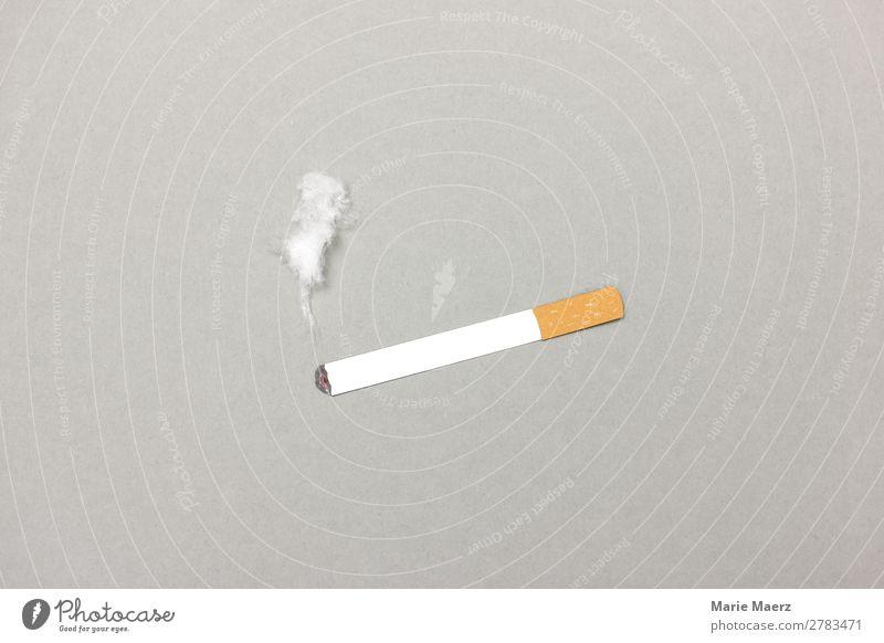 Brennende Zigarette mit Rauch Lifestyle Gesundheit Rauchen atmen grau Laster Appetit & Hunger Stress Drogensucht genießen Nikotin Sucht Ritual Routine Pause