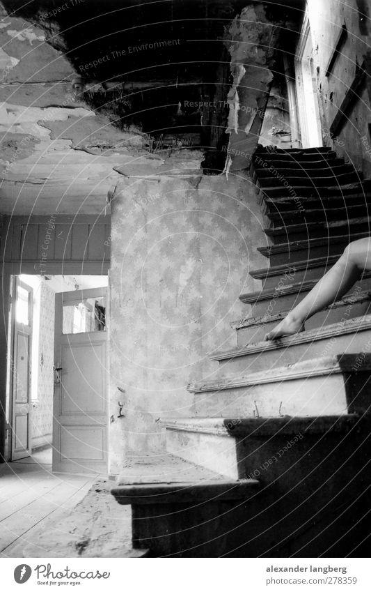 border Schwarzweißfoto Innenaufnahme Schwache Tiefenschärfe Frauenbein 1 Mensch einzeln Nur eine Frau allein Treppe verfallen schäbig alt Unbewohnt Unbewohnbar