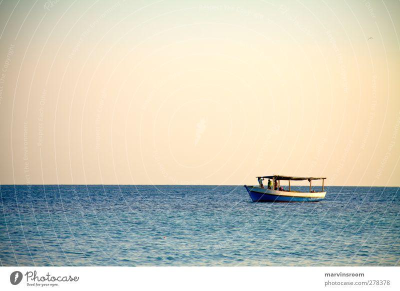 allein auf See Meer Landschaft Wolkenloser Himmel Schönes Wetter Wellen Küste Bootsfahrt Fischerboot blau Farbfoto Abend Weitwinkel