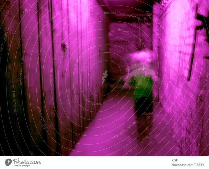 Angst Langzeitbelichtung Unschärfe unklar violett grün Keller dunkel gefährlich laufen Rauschmittel Terror träumen Alptraum Panik Jugendliche bedrohlich rennen