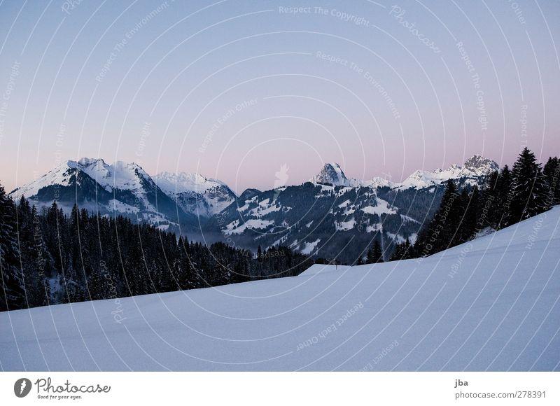 Morgendämmerung Natur blau Wasser Winter ruhig Erholung Landschaft Berge u. Gebirge Schnee Freiheit Urelemente Schönes Wetter Dach Alpen Gipfel Tanne