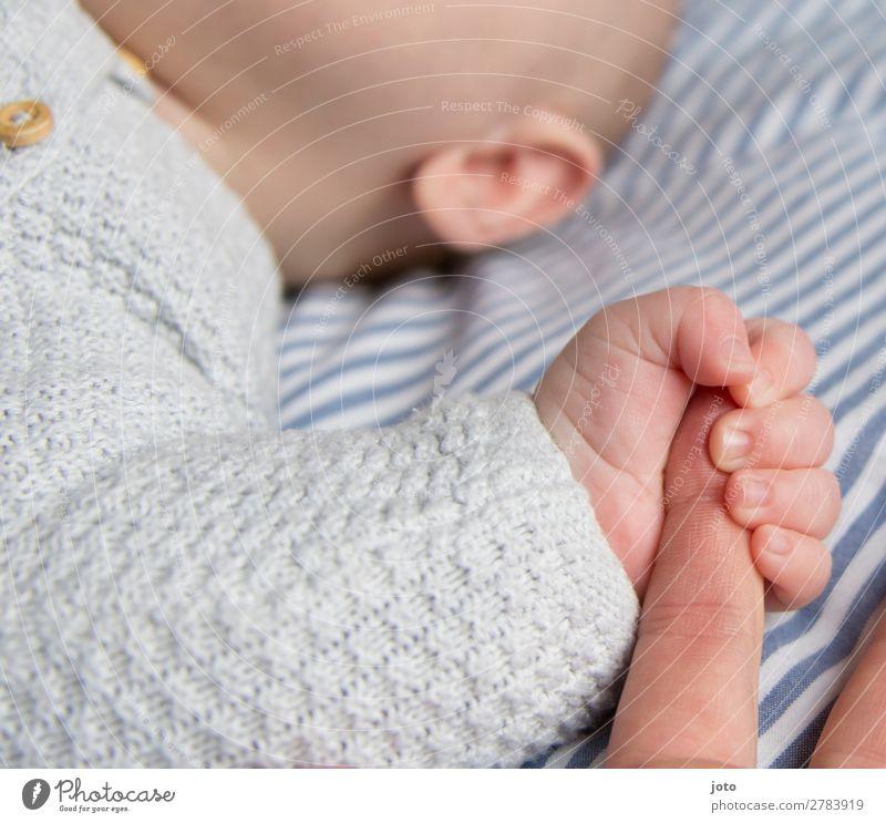 ich lass nicht los Glück Zufriedenheit Erholung ruhig Baby Junge Mutter Erwachsene Kindheit Hand Finger 0-12 Monate berühren festhalten genießen Kommunizieren