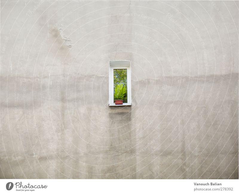 Fenster Wand Einsamkeit Haus kalt Traurigkeit Angst Schutz Sehnsucht Platzangst Verzweiflung Fernweh Scham Erschöpfung Enttäuschung Heimweh Unlust