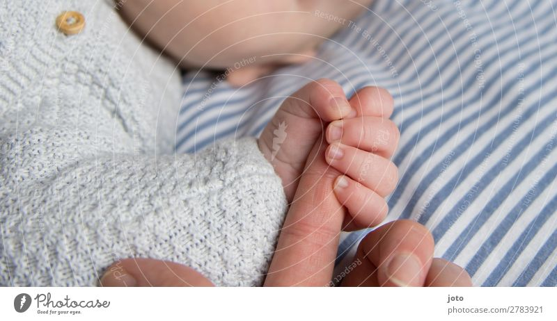 greifen Glück Zufriedenheit Erholung ruhig Baby Junge Mutter Erwachsene Kindheit Hand Finger 0-12 Monate berühren festhalten genießen Kommunizieren liegen