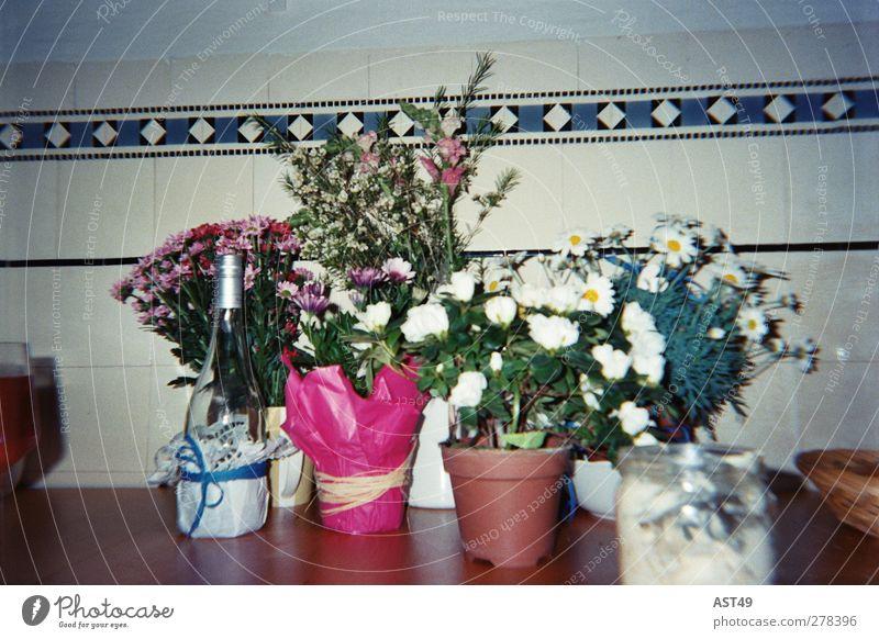 Sieht so aus wie sich der Tag danach anfühlte... Alkohol Wein Glas Häusliches Leben Dekoration & Verzierung Küche Feste & Feiern Geburtstag Blume hässlich