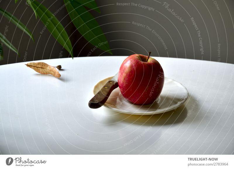 Roter Apfel mit Küchenmesser auf weissem Teller Lebensmittel Frucht Ernährung Bioprodukte Vegetarische Ernährung Messer Lifestyle Gesundheit Wellness harmonisch