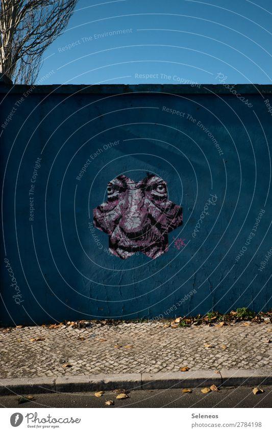 coming out Mensch Gesicht Graffiti Wand Mauer Fassade maskulin beobachten