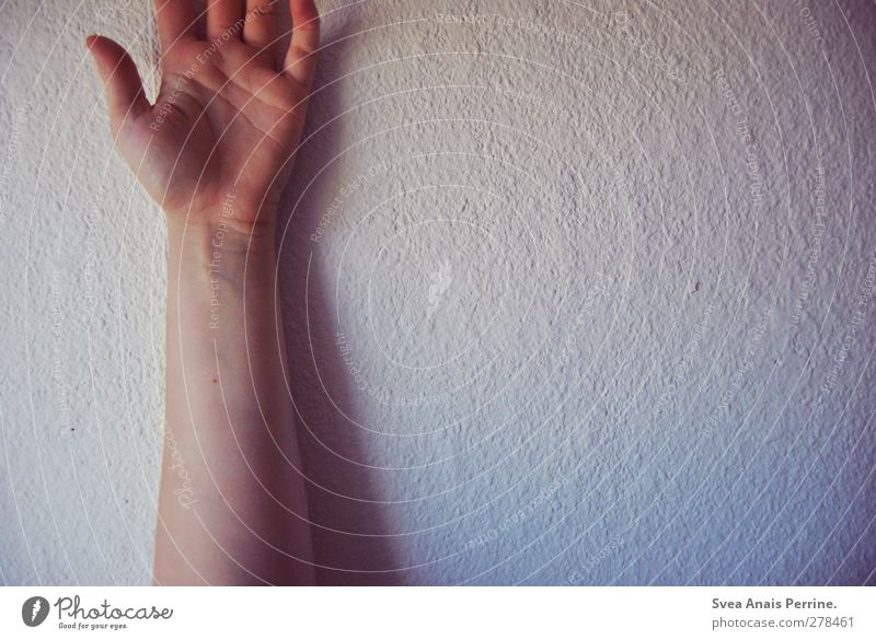 wandgeschichten. feminin Junge Frau Jugendliche Körper Haut Arme Hand Finger 1 Mensch 18-30 Jahre Erwachsene Mauer Wand Tapete Raufasertapete kalt trashig rosa