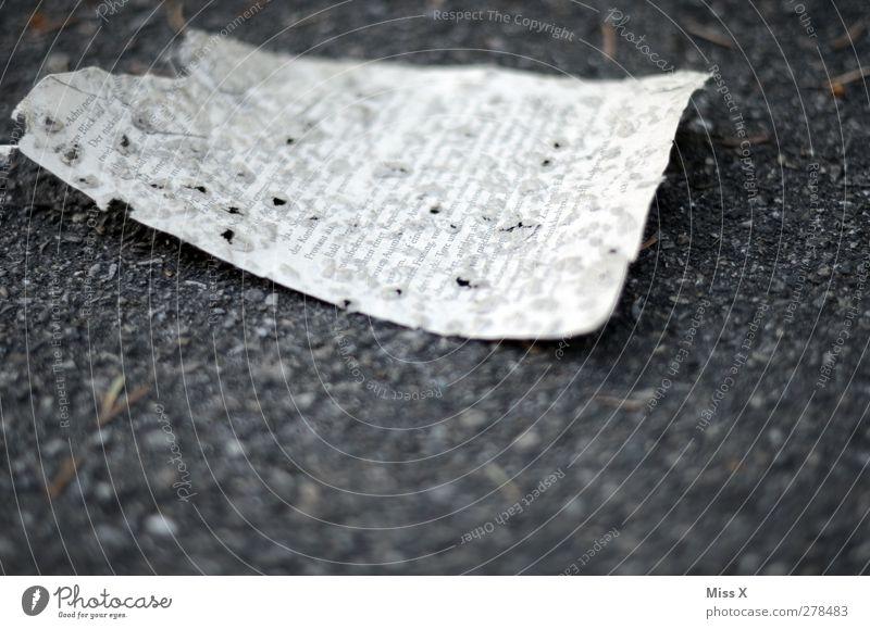 wichtige Dokumente Straße Wege & Pfade alt dreckig kaputt Verfall Vergänglichkeit Buchseite Schriftzeichen Schriftstück Loch Zerstörung verloren Tagebuch