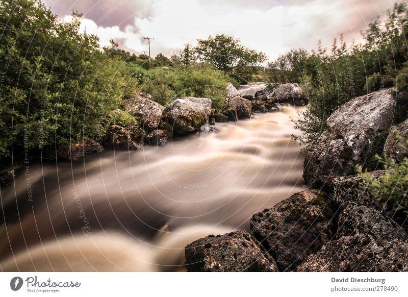 Irish river Ferien & Urlaub & Reisen Natur Wasser Wolken Sommer Pflanze Bach Fluss braun Nordirland grün Sträucher Felsen Stein Strömung Farbfoto Außenaufnahme