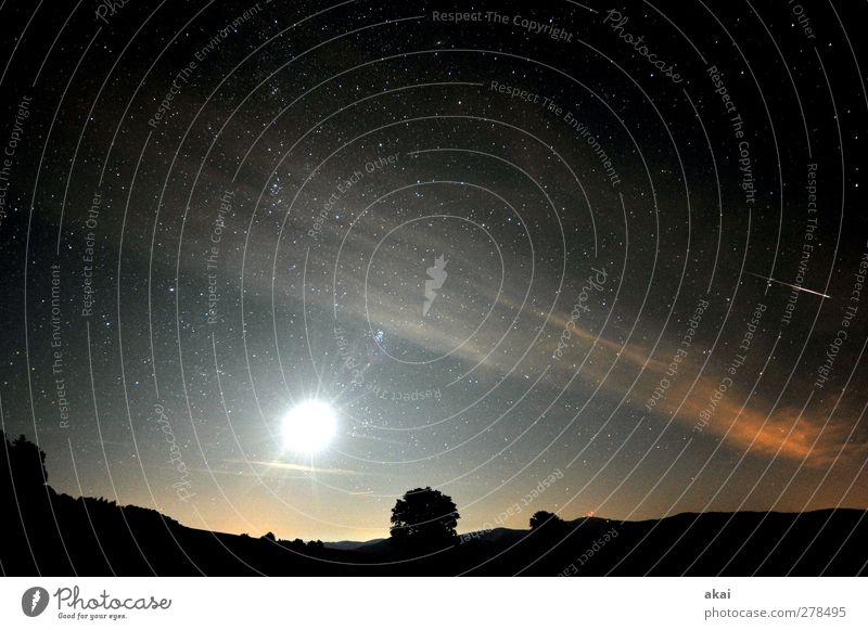 Sternschnuppe Natur Landschaft Himmel Nachthimmel Mond Schönes Wetter blau orange schwarz Meteor Schwarzwald Baum Schauinsland Weltall Sternbild Farbfoto