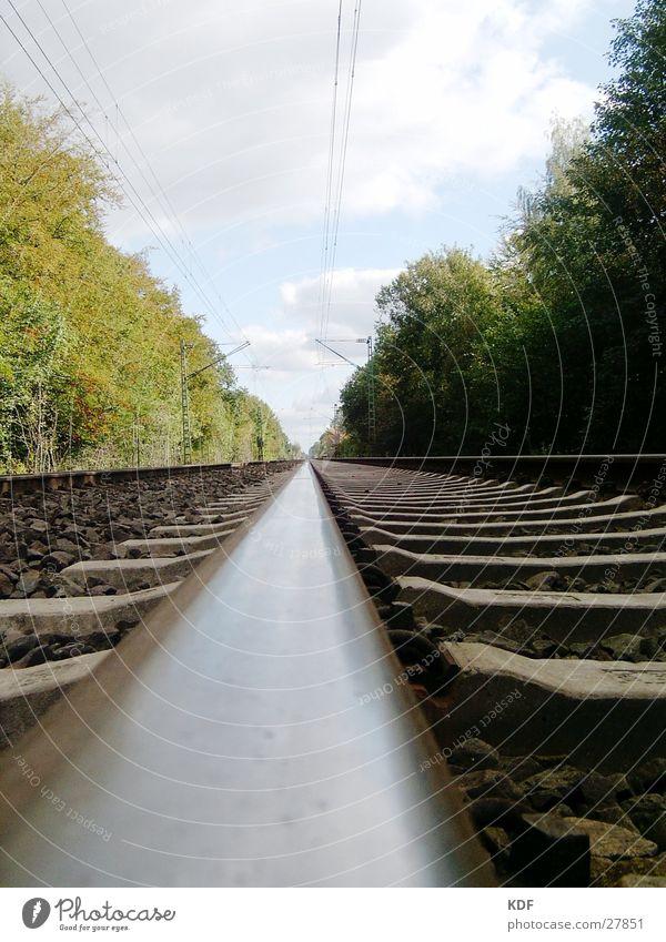 Himmel/Erde Baum Ferien & Urlaub & Reisen frei Verkehr Eisenbahn Gleise Teilung unterwegs