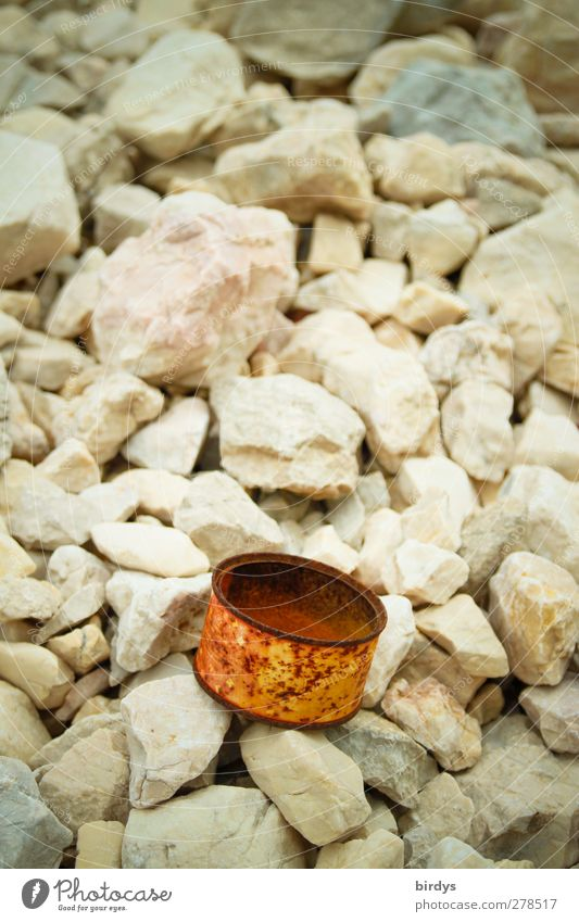 Lebenszeichen alt Stein authentisch Vergänglichkeit Müll Rost Rest Umweltverschmutzung Konservendose