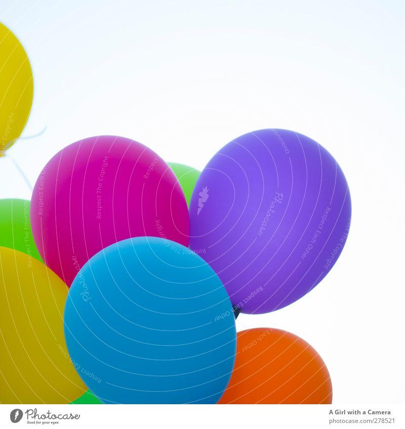 what a day! Lifestyle Dekoration & Verzierung rund viele verrückt mehrfarbig Luftballon Feste & Feiern Freude Farbfoto Außenaufnahme Detailaufnahme Luftaufnahme