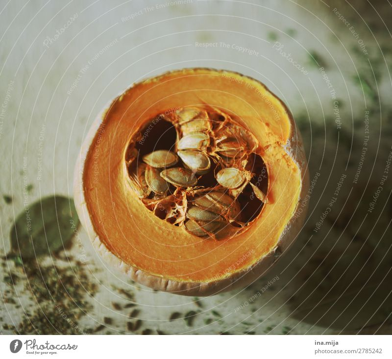 lecker Gesunde Ernährung Gesundheit Herbst orange frisch kochen & garen rund Kräuter & Gewürze Gemüse Essen zubereiten Bioprodukte Vegetarische Ernährung Diät