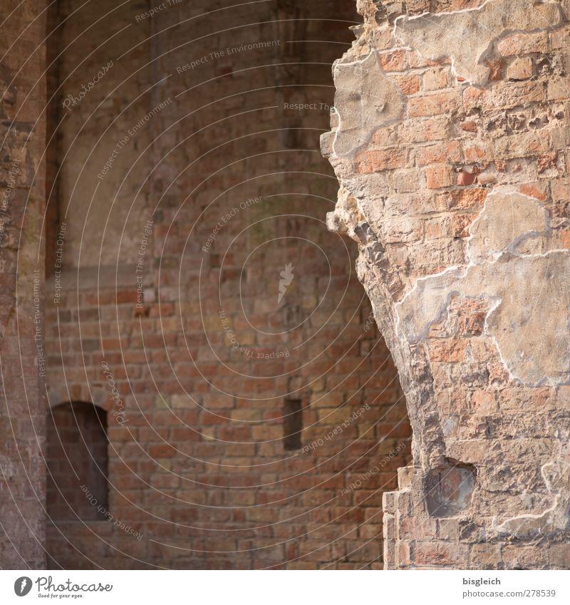 Kloster VII Chorin Bundesadler Europa Kleinstadt Kirche Kloster Chorin Mauer Wand Stein alt braun Vergänglichkeit Farbfoto Innenaufnahme Menschenleer