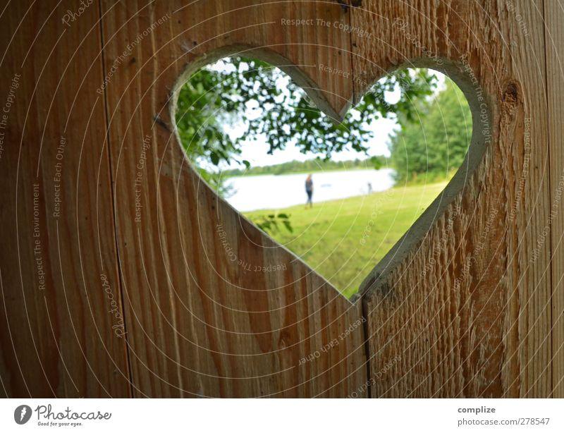 stilles Örtchen Mensch Jugendliche Ferien & Urlaub & Reisen grün schön Sommer Baum ruhig Liebe Wiese feminin Erotik Junge Frau Gras Holz Küste