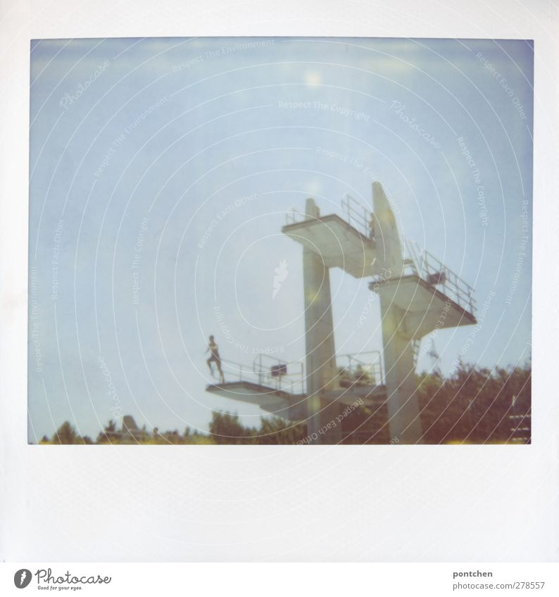 Jugendlicher springt vom 3 Meter Brett vom Sprungturm. Mut Freizeit & Hobby Junger Mann 1 Mensch springen Freibad Sprungbrett Baum Farbfoto Gedeckte Farben