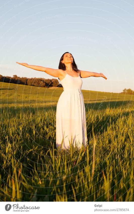 Entspannte brünette Frau Lifestyle Stil Glück schön Gesicht Erholung Sommer Mensch Erwachsene Blume Gras Park Wiese Mode Kleid Coolness frei Fröhlichkeit frisch