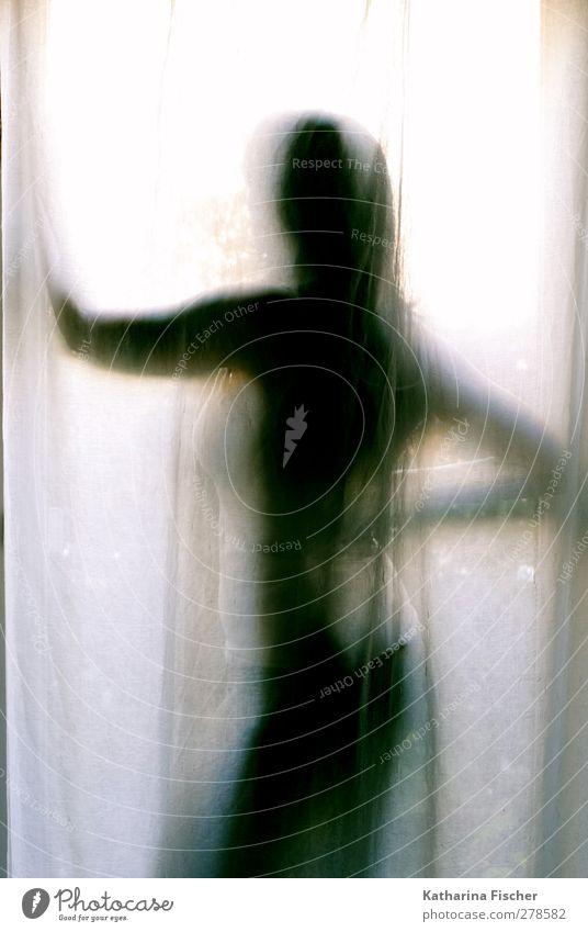 Wednesday afternoon Frau Erwachsene 1 Mensch 30-45 Jahre blau braun mehrfarbig grau schwarz weiß Vorhang Stoff durchsichtig geheimnisvoll Morgendämmerung