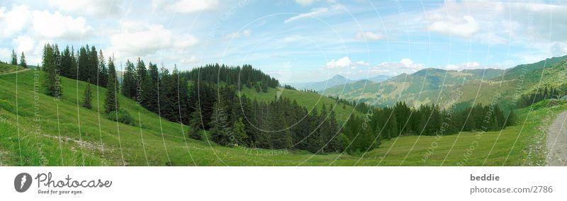 Allgäu-Panorama2 Wiese Panorama (Aussicht) Baum Ferne Berge u. Gebirge Tal groß Panorama (Bildformat)