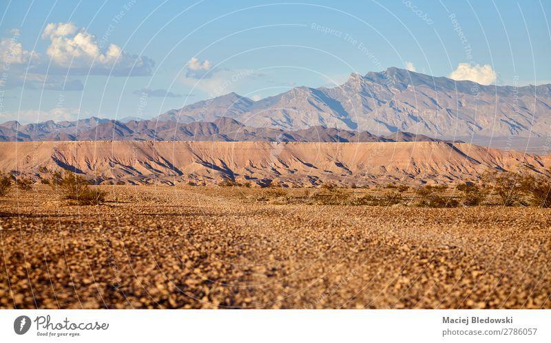 Valley of Fire Landschaft bei Sonnenuntergang, USA. Ferien & Urlaub & Reisen Ausflug Abenteuer Ferne Expedition Sommer Sommerurlaub Berge u. Gebirge wandern