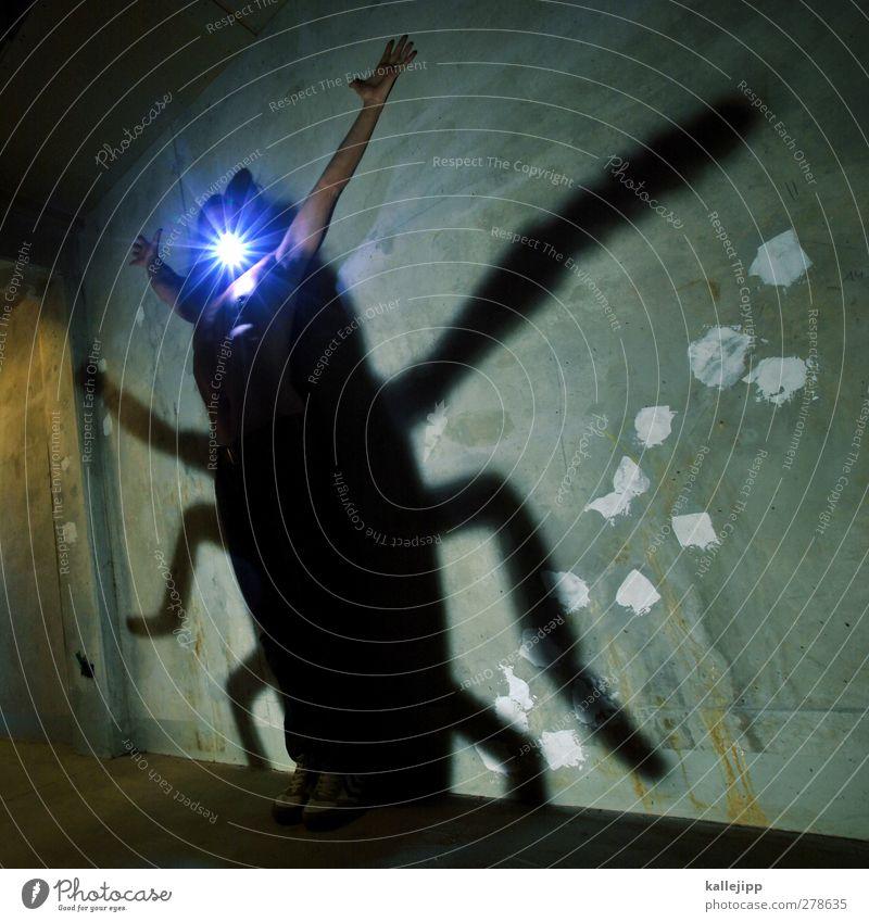 die verwandlung Mensch maskulin 1 Tier Käfer leuchten verwandeln Schattenspiel Gemeine Küchenschabe Insekt Monster gruselig Taschenlampe Beton Karnevalskostüm