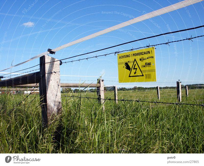 Achtung! Powerzaun! Himmel grün blau Wolken Wiese Schilder & Markierungen Elektrizität Weide Warnhinweis Stacheldraht Kondensstreifen Warnschild Stromschlag