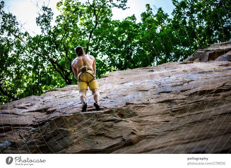 Verschnaufpause Mensch Himmel Natur Mann Jugendliche Sommer Baum Blatt Wolken ruhig Erwachsene Erholung Landschaft Umwelt Berge u. Gebirge Leben