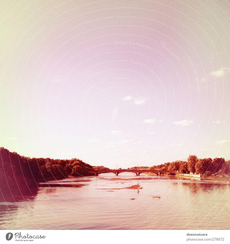 Blick auf eine Brücke in Leipzig Umwelt Natur rosa Elster Luppe Aue NP angerbrücke Himmel Wald Fluss Park bleich Farbfoto Gedeckte Farben Außenaufnahme